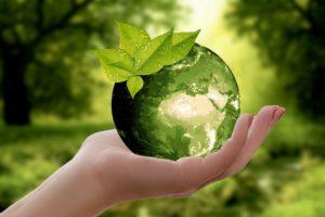 Día Mundial de la Eficiencia Energética.