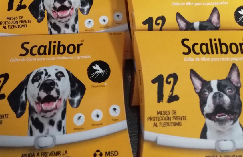 Scalibor, salud para tu perro